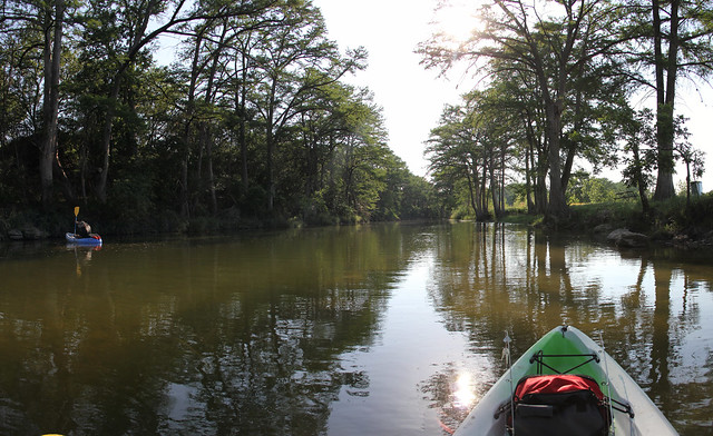 Kayaking the Guadalupe River