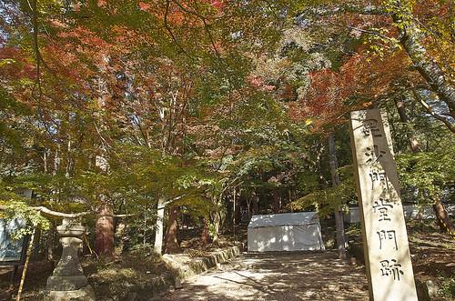 【写真】紅葉 : 毘沙門堂