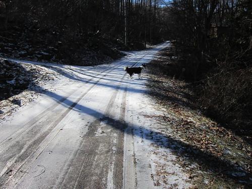 凍結しているところもあるので注意して歩きます 2013.11.30 by Poran111