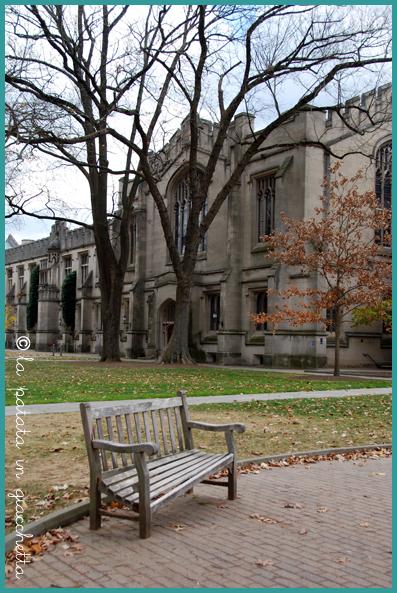 NJ-Princeton-3