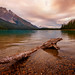 Emerald Lake Log by Panorama Paul