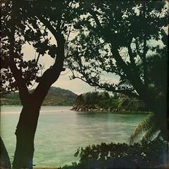 My hipstamatic Seychelles #seychelles #mahe #beach #ocean