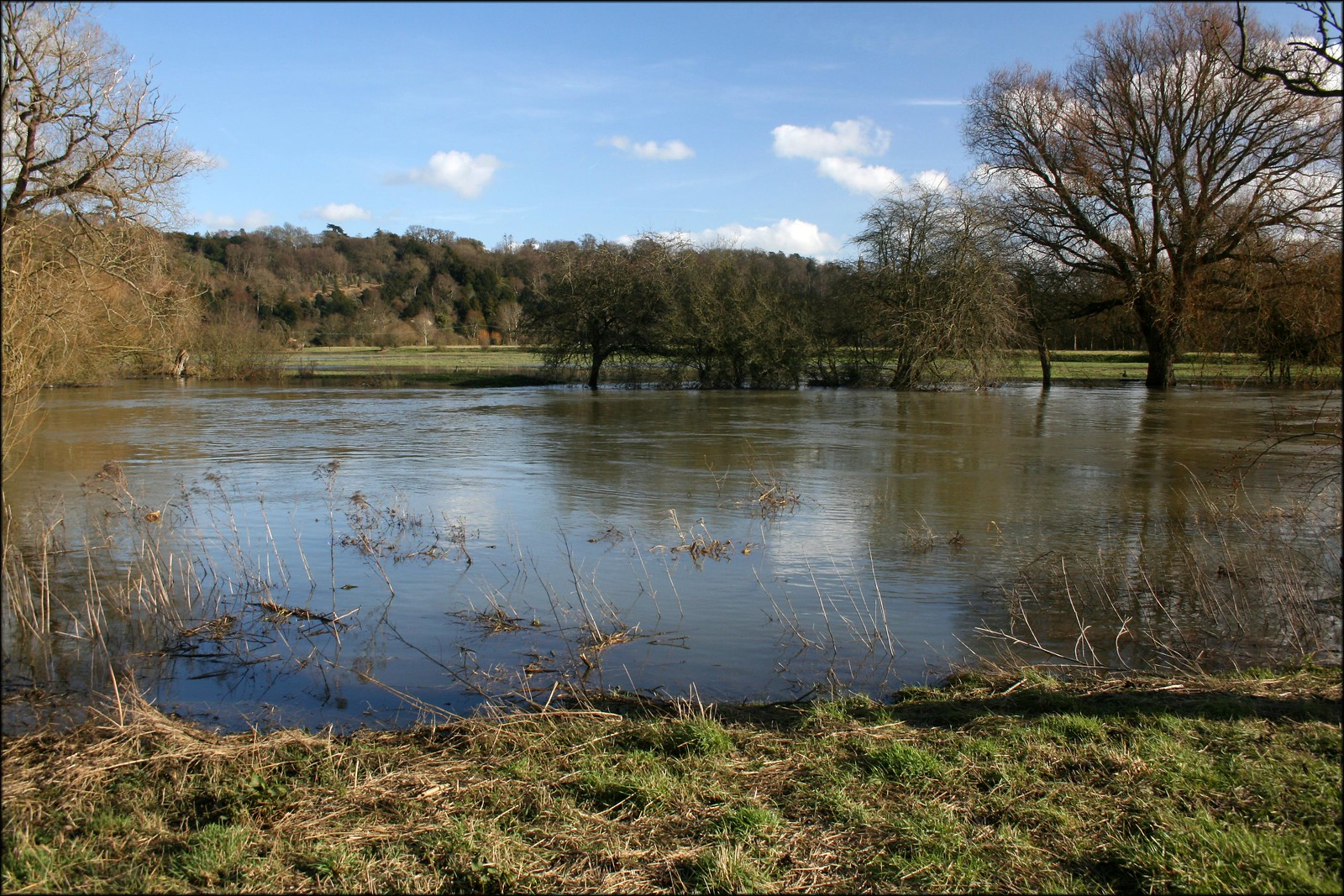 The Thames near Cookham