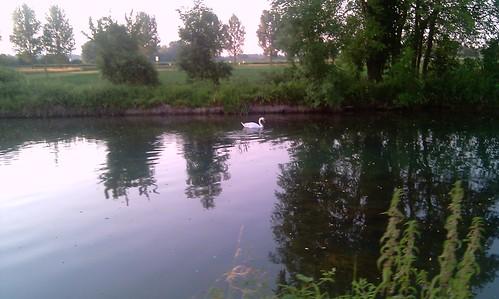 Voie Verte Canal Colmar_2010-06-30-027