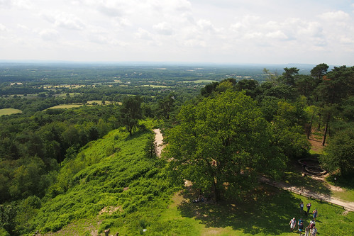 View from Leith Hill Tower