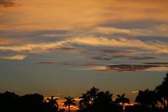 sky paradise #6
