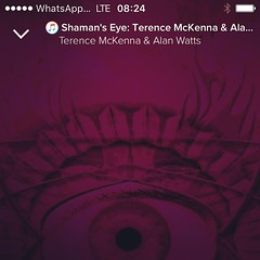 #spaceschneider #mobile #listening #terencemckenna #alanwatts #shamanseye #visionary #psybient / #artwork #modular / #screenshot #rise-filter / #rogalist #mediathek #itunes