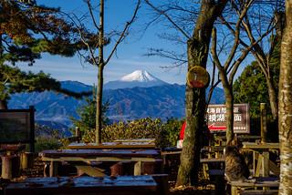 富士山を展望@城山ベンチ