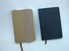 victorias journals07