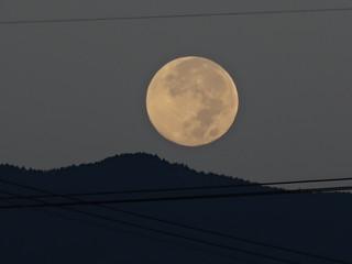 中秋の名月 (月の入り)