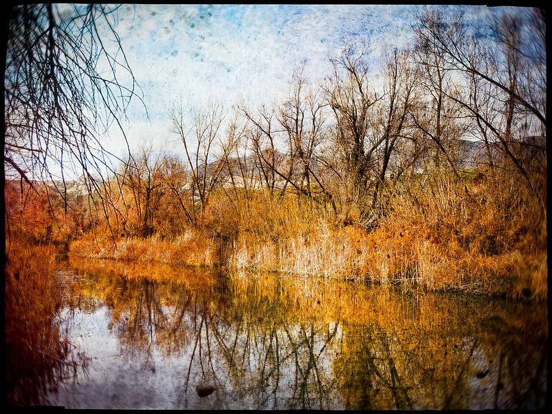 Sespe River • Ojai, CA 2012