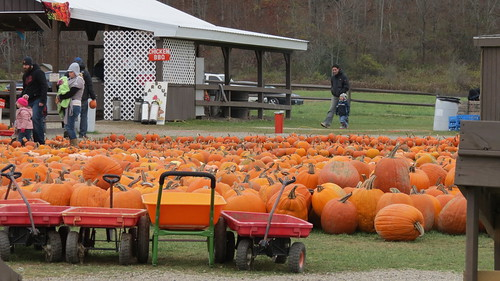 2013 Pumpkinville