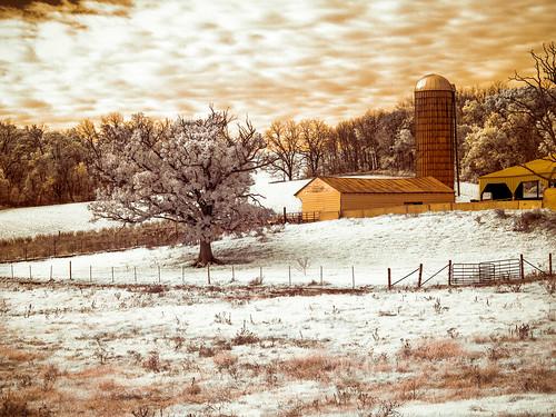 Autumn Farm IR