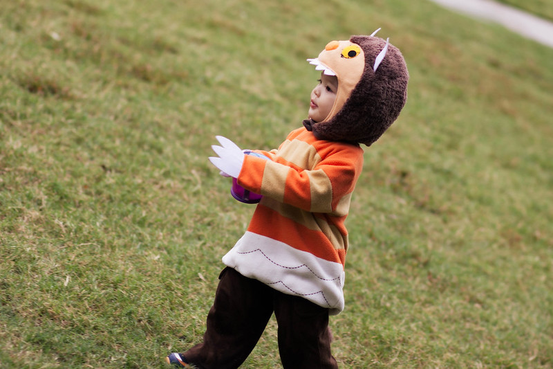 cute & little blog | halloween 2013 | dylan 16 months | where the wild things are monster costume