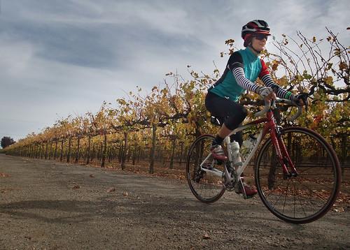 Giro d' Vino 2013 ricia in vinyard