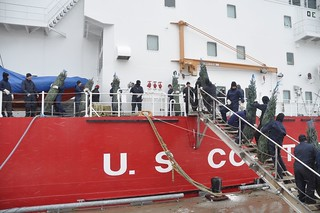 Crewmembers load more than 1,200 Christmas trees onto the Coast Guard Cutter Mackinaw, Nov. 25, 2013. The Mackinaw, serving as this year's Christmas Ship, will help re-enact a tradition dating back to the late 1800s and early 1900s when the Rouse Simmons delivered trees to the people of Chicago for more than 30 years. (U.S. Coast Guard photo by Petty Officer 3rd Class John Filippone)