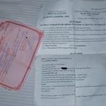 Fr, 05.03.10 - 13:02 - DSC_4949 (Bearbeitet in GIMP Bildbearbeitung)