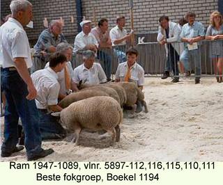 Ram 1947-1089 vlnr 5897-112 - 116 - 115 - 110 en 111 - 1994