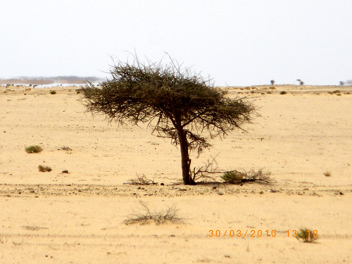 desierto marruecos 2010 saharaoccidental rutasmaraelaaioun marruecosssanta10