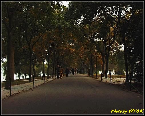杭州 西湖 (其他景點) - 258 (在西湖十景之 蘇堤 左面是西湖 右面是西裡湖)