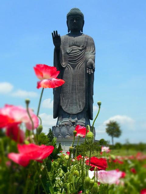 牛久大仏 Giant Ushiku Amida Buddha