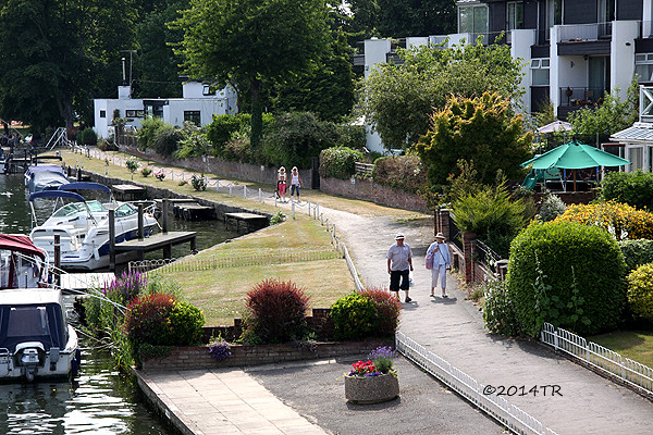 Hand and flowers- Marlow-20130712