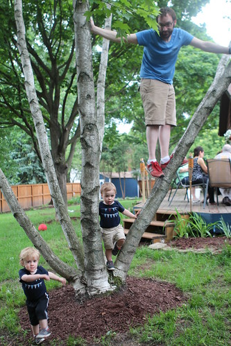 Bubses and Daddy Climbing Tree