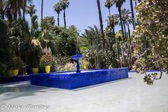 Fuente en Jardines Majorelle