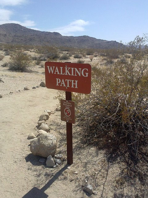 walking path meditation