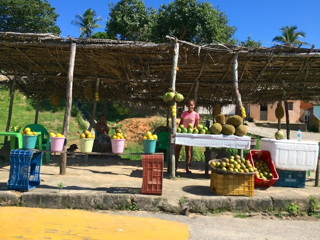 Morning at the fruit stand