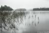 Lakeview Estonia