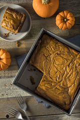 Homemade Pumpkin Chocolate Brownies
