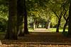 Park w Koszalinie
