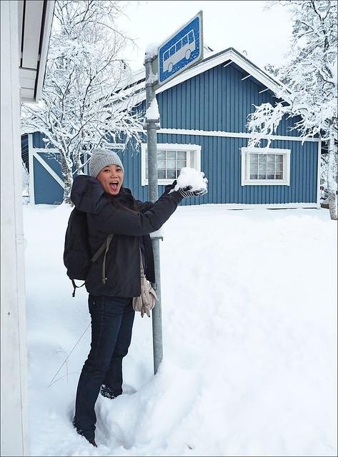 赫爾辛基羅瓦涅米北極特快車臥鋪_076