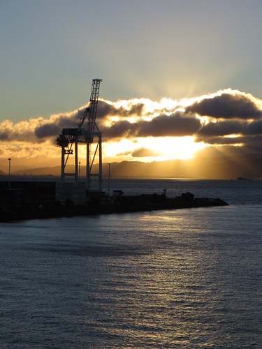 sunrise in wellington harbour