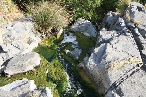 El Salto Falls