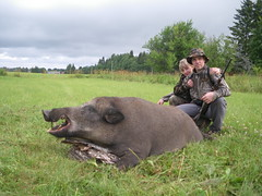 Wild Boar Hunting in Estonia - Nordic Hunting CLub