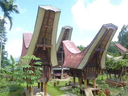 Sulawesi13-Lo'ko Mata-Ke'pa (53)
