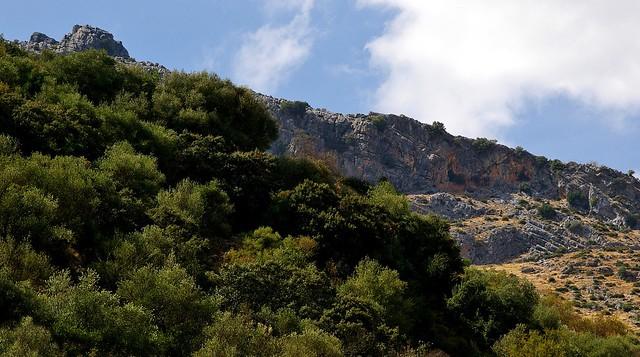 Benaoján (Málaga) (2)