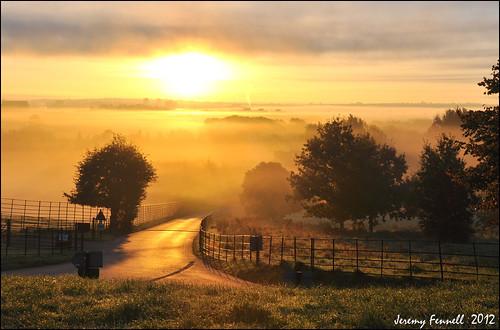 road trees mist sunrise fence bristol golden earlymorning lane fields 2012 ashtoncourt longashton lunaphoto ashtoncourtestate