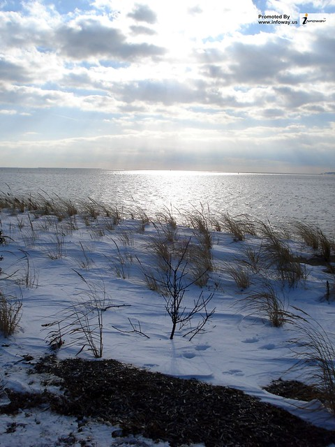 Snow Beach | Flickr - Photo Sharing!: www.flickr.com/photos/104094986@N06/10453278344