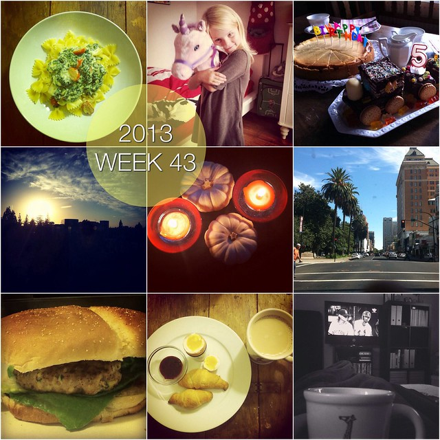 2013 in pictures: week 43