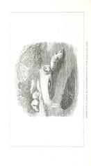 Image taken from page 318 of 'Exploration dans l'intérieuŕ de l'Afrique Australe. Ouvrage traduit de l'Anglais par Mme. H. Loreau'