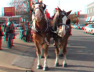 3D Carytown Carriage Ride