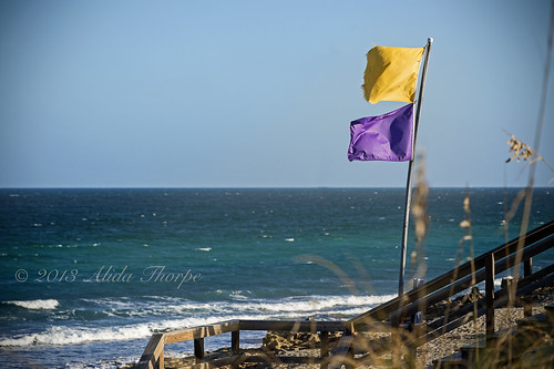 Warning Flags by Alida's Photos