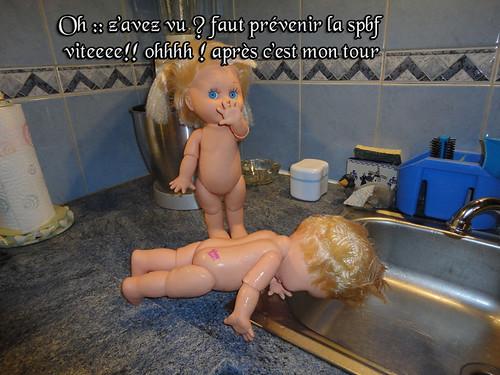 La petite vie de mes Baby face (la blessure ) - Page 2 11758437873_49413e7ef8