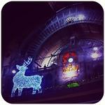 Pretty lights ✨ Antwerpen Centraal