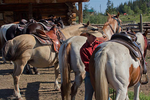 Big Bar Guest Ranch near Clinton in the Cariboo, British Columbia, Canada