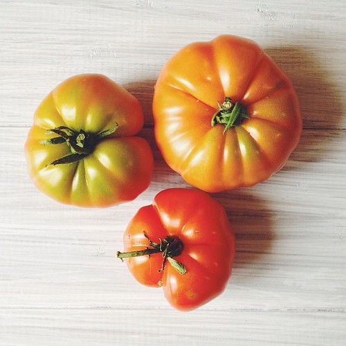 #eatfoodphotos Jan 23 | #natural - home grown tomatoes gifted by a neighbour #vsco #vscocam