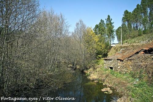 Rio Vouga - Portugal